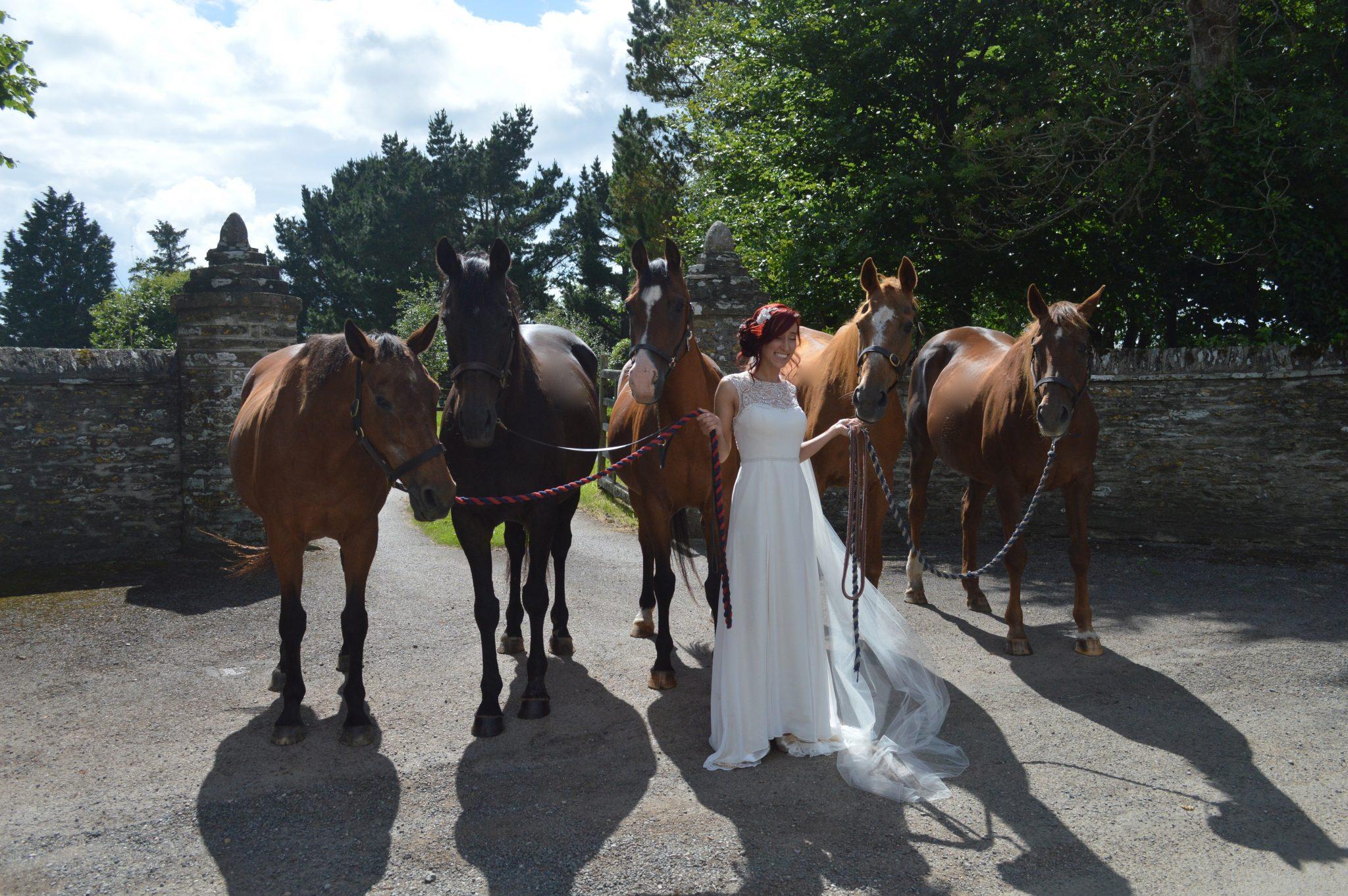 ash-rescue-centre-devon-wedding-home-one