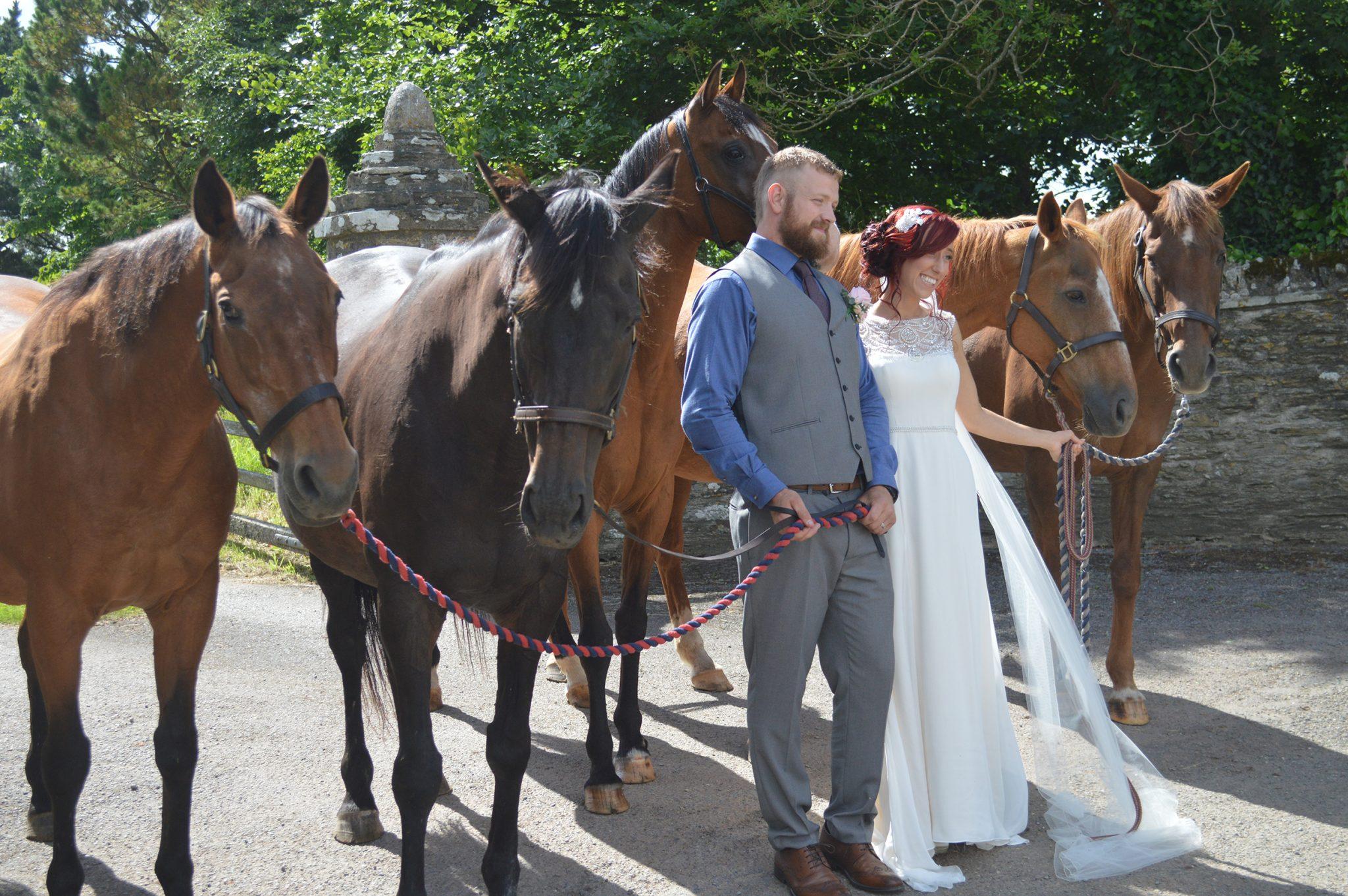 amy amp pauls wedding ash rescue centre