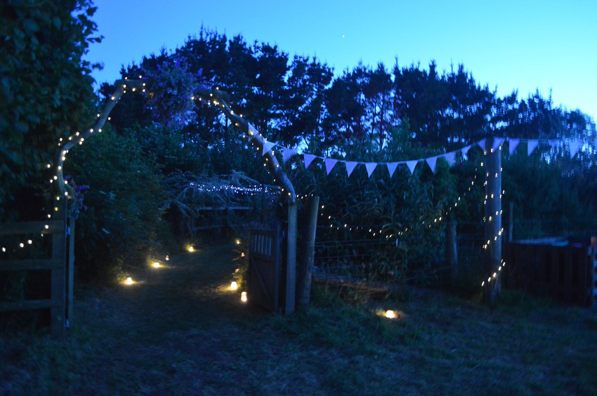 ash-rescue-centre-devon-weddings-venue-night-garden